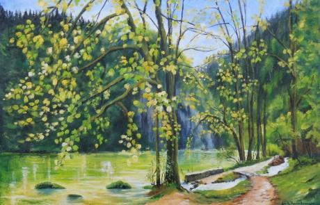 Le printemps inonde le Theusseret - 60 X 90 cm <br /> CHF 1