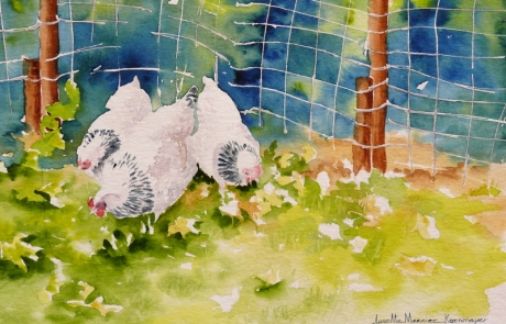 Poules blanches - 22 X 31 cm <br /> CHF 300