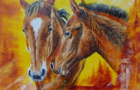 Tendresse des chevaux <br /> VENDUE